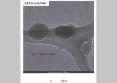 Hatóanyagoknak a központi idegrendszerben történő szabályozott leadására alkalmas nanokompozit, eljárás annak előállítására és alkalmazása