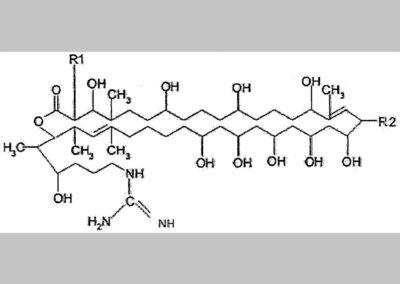 Primycin vagy primycin komponensek vagy ezek kombinációi mint speciális kórokozócsoportok által okozott fertőzések kezelésére vagy megelőzésére alkalmas gyógyszerhatóanyagok